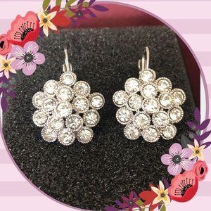 Fashion dangling earrings new
